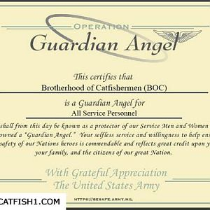 The BOC is now a Guardian Angel