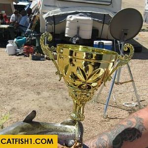 Az Fat Cat Classic 2011
